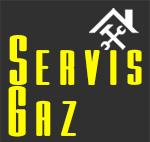 Запчасти для газовых котлов в Украине - ServisGaz